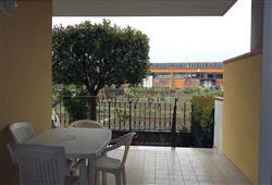 Apartmány Mimosa8