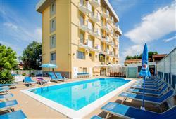 Hotel Viking***0