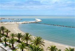 Hotel Mediterraneo - Martinsicuro***11