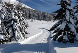 Hotel Augustus - 5denný lyžiarsky balíček so skipasom a dopravou v cene***25