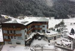 Hotel Ariston - Molveno***2