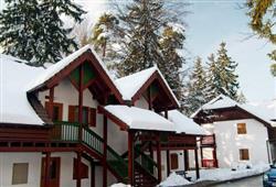 Vily Terme Zreče - zimní zájezd se skipasem v ceně****2