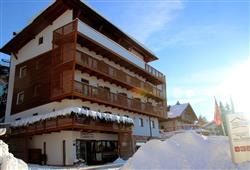 Hotel Chalet Caminetto***0