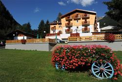 Hotel Alpino - Pejo***2
