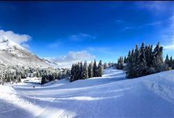 Hotel 1301 Inn - 6denní lyžařský balíček s denním přejezdem a skipasem v ceně***25