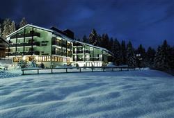 Hotel Alaska - Folgarida***8