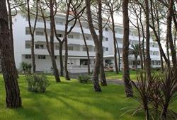 Hotel Domizia Palace****1