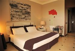 Hotel Domizia Palace****4