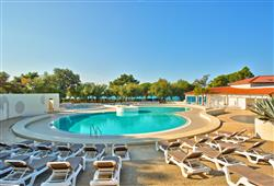 Hotel Park Plaža Belvedere****3