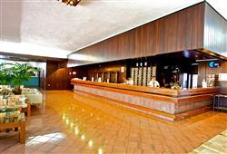Hotel Brioni**10