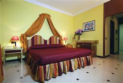 Hotel Domizia Palace****3