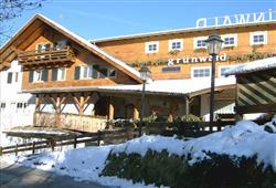 Hotel Grünwald****1