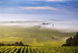 Burgundsko, země nekonečných vinohradů