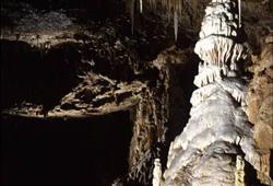 Některé stalagmity měří až čtyři metry