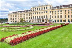 ZOO Vídeň + Schönbrunn5