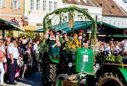 Jednou z největších každoročních slavností je vinobraní, kdy se městečko přeplní žíznivými a zvědavými turisty